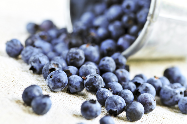 employee health, nutrition, blueberries