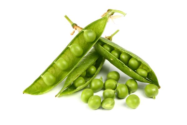 organic, nutrients, vegetables, employee health