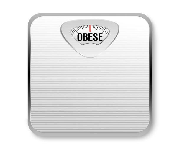 ObeseScale resized 600