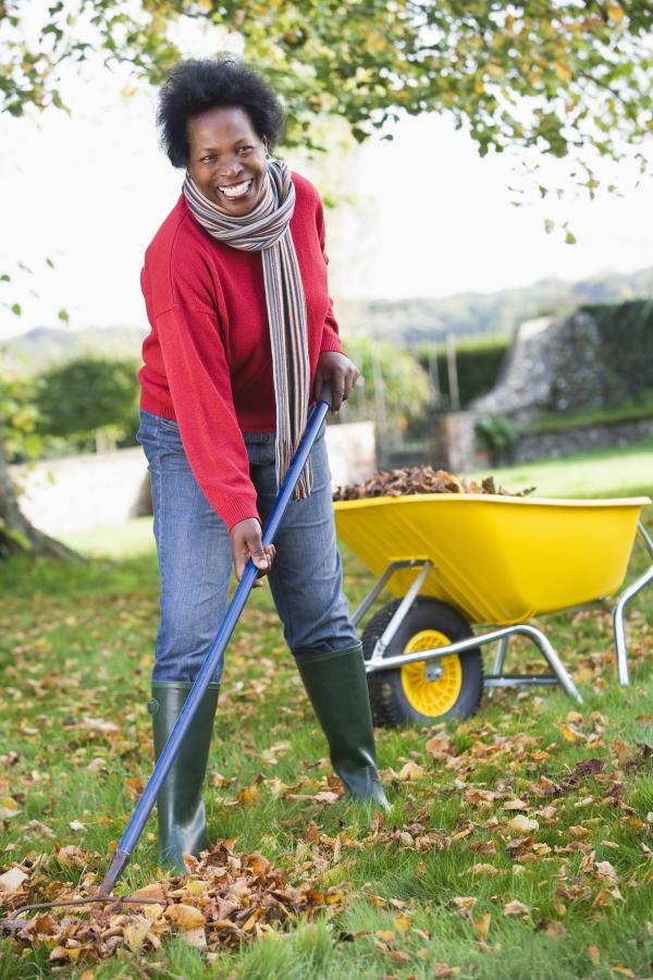 yard work, exercise, fitness