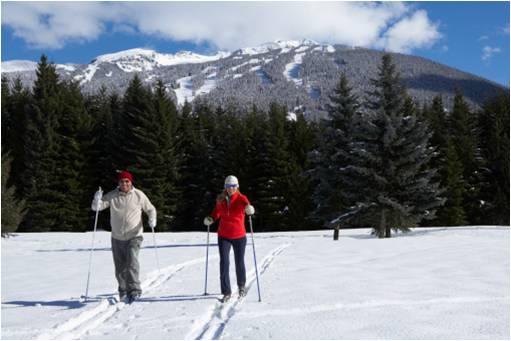 cross country skiing