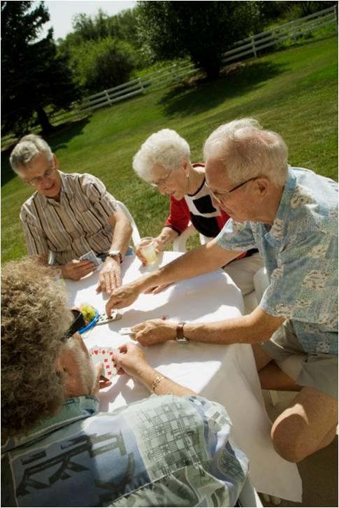 social seniors
