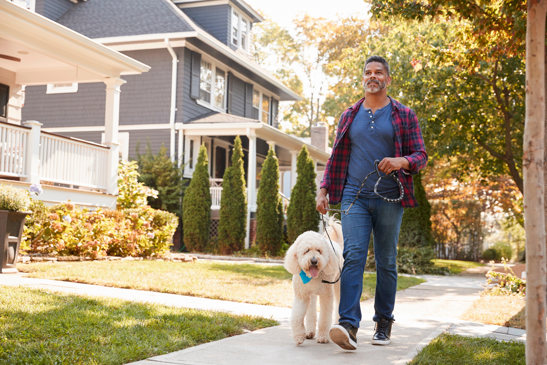 NIFS | Neighborhood Walk with Dog